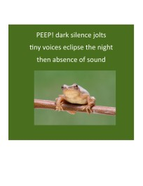 Peepers 4.06.19