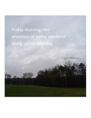 Rainy Morning 4.05.19