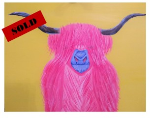 Pink Highlander Cow Sold